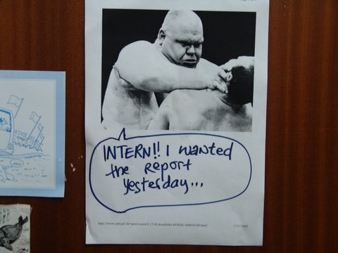 intern-where-is-my-report