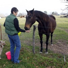 Julia on her ranch before Keystone starts work
