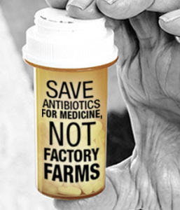 Save Antiboitics for Medicine, Not Factory Farms