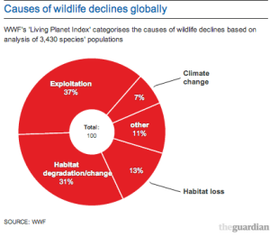 Wildlife Decline Graph - from The Guardian