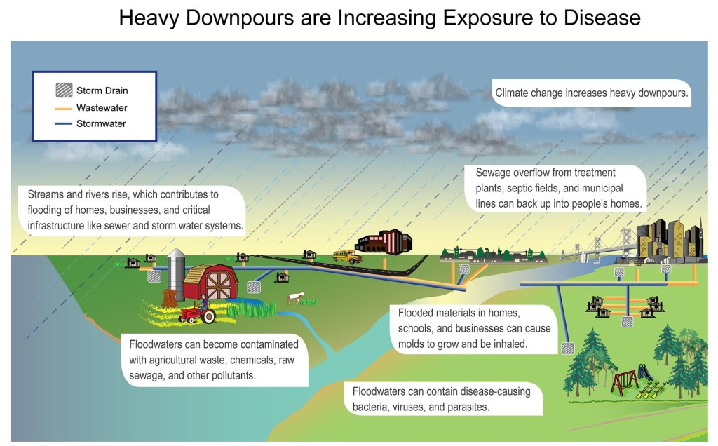 Heavy downpours, which are increasing in the United States, have contributed to increases in heavy flood events, which exposes people to waterborne diseases. Graphic from NOAA NCDC and CICS-NC