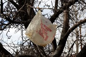 2014-11-02 Plastic Bags in Tres - Public Domain Images