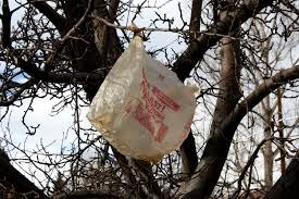 2014-11-02 Plastic Bags in Tres - Public Domain Images